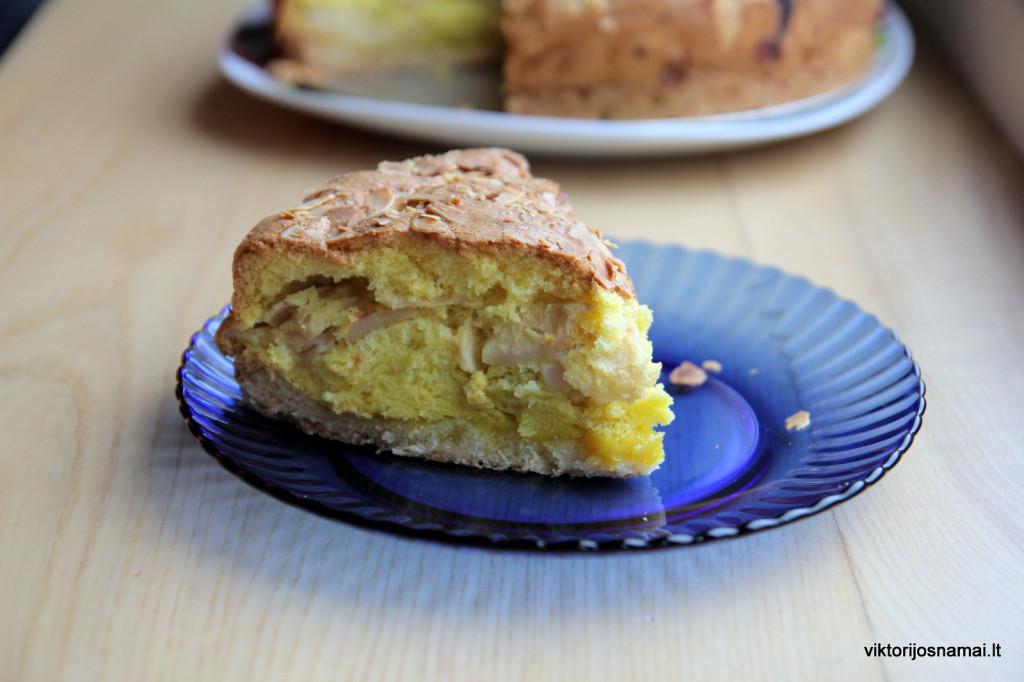 Obuolių pyrago gabalėlis