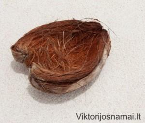 Kokoso riešuto lukštas