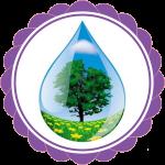 vandens faze